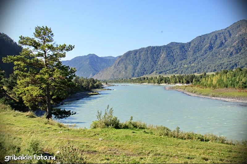 IMG_01_Altai_Katun river