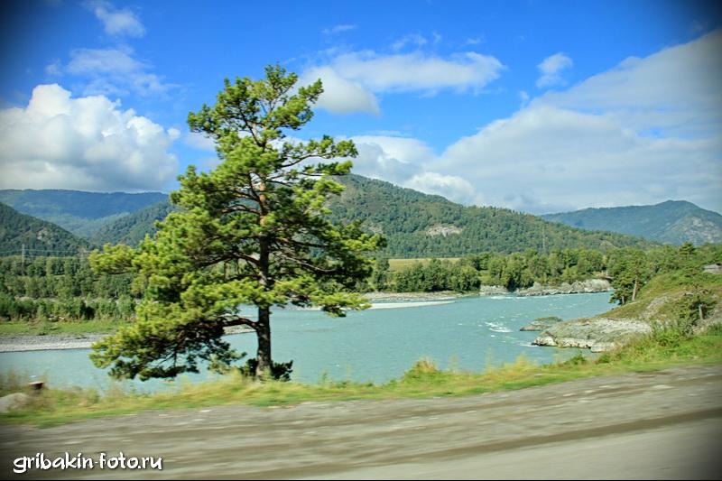 IMG_02_Altai_Katun river