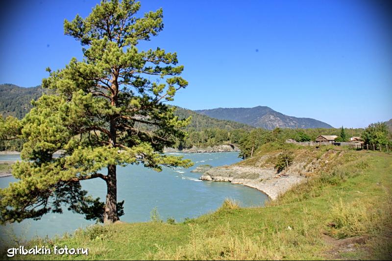 IMG_04_Altai_Katun river
