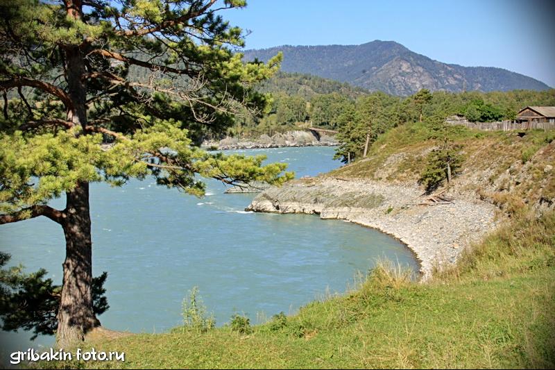IMG_05_Altai_Katun river