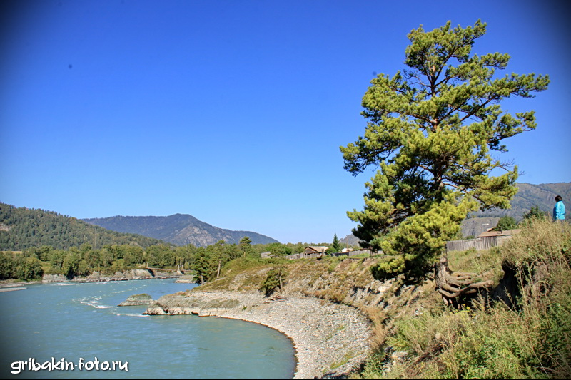 IMG_06_Altai_Katun river