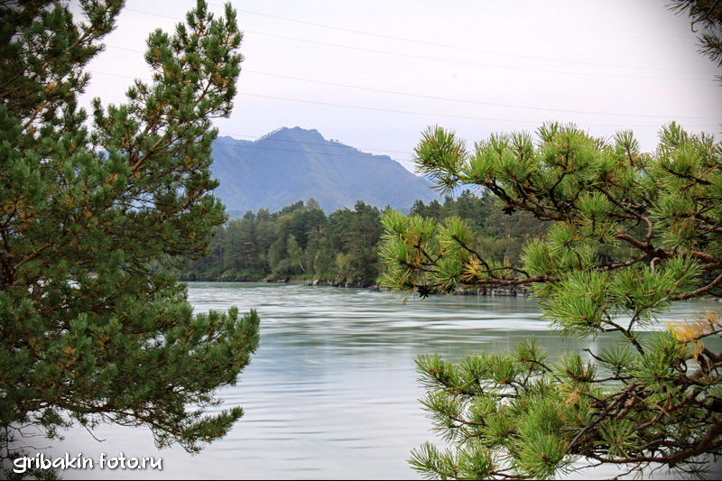 IMG_07_Altai_Katun river