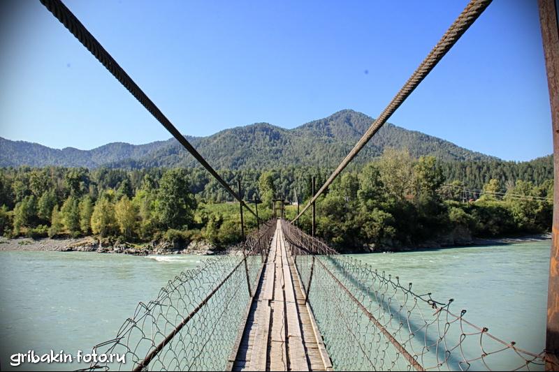 IMG_08_Altai_Katun river