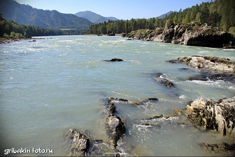 IMG_11_Altai_Katun river