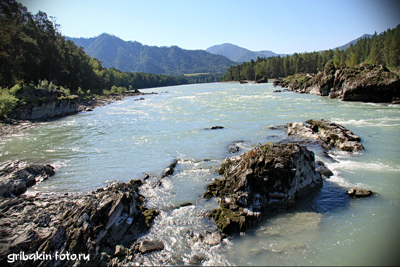 IMG_13_Altai_Katun river