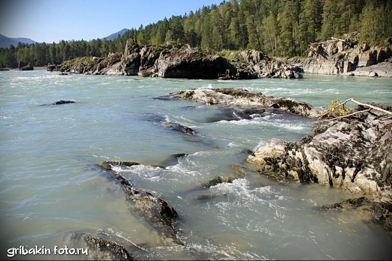 IMG_14_Altai_Katun river