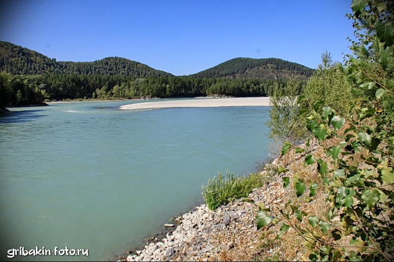 IMG_17_Altai_Katun river