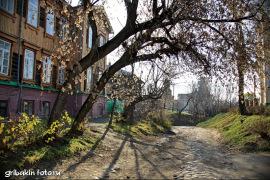 IMG_15_Tomsk city